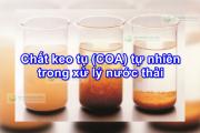 Chất keo tụ (COA) tự nhiên trong xử lý nước thải